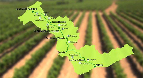 La Carretera del Vi. Новый винный маршрут по Барселоне