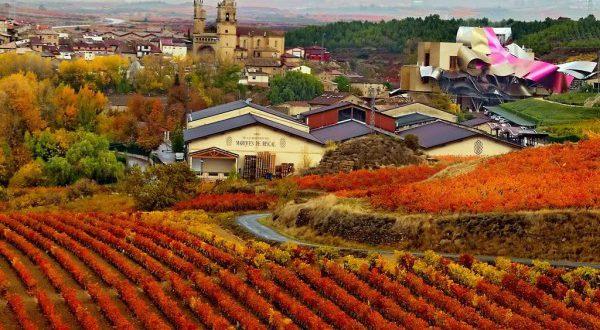 Испания: жемчужина винного туризма