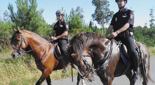 Праздник Вознесения Девы Марии будет охраняться конными патрулями и авиацией