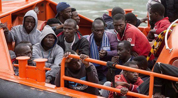 Нелегальные мигранты отправятся домой