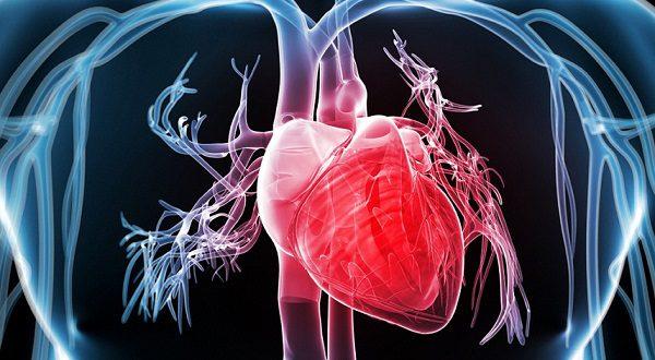Испанские ученые создали уникальный жилет для лечения аритмии сердца