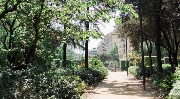 Парк Туро будет реконструирован