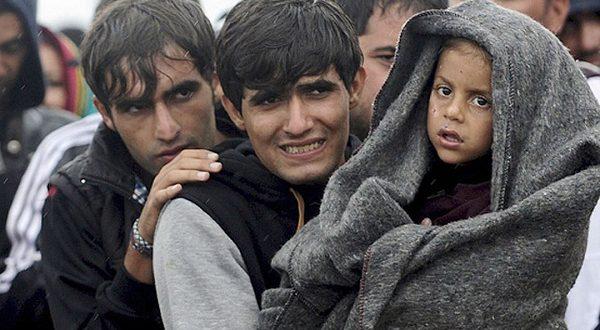 Испания увеличивает число принимаемых беженцев