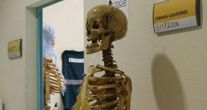 В Аликанте запустят подготовку врачей по программе Cyborg