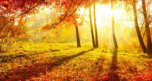 Какой будет осень в этом году в Испании?