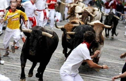 праздники с участием быков