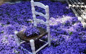 Фестиваль «Время цветов» в Жироне