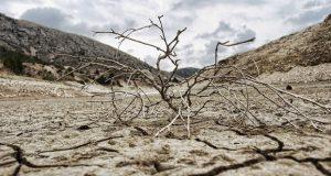 Провинция Аликанте подверглась колоссальной засухе