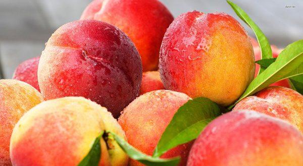 Пробку на дороге образовали тонны высыпавшихся персиков