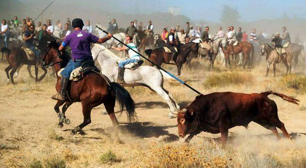 В Мадриде прошла манифестация с требованием поставить под запрет все развлечения с быками