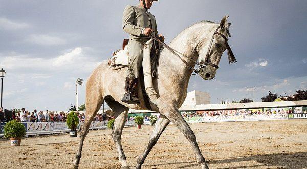 Чемпионат Doma Vaquera назовет лучших ковбоев