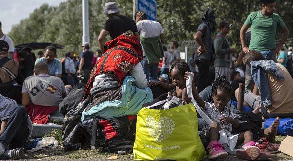 Беженцы штурмуют границы