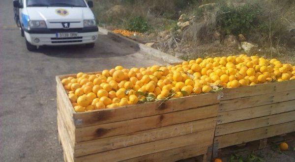 Полиция задержала «апельсиновых» воров