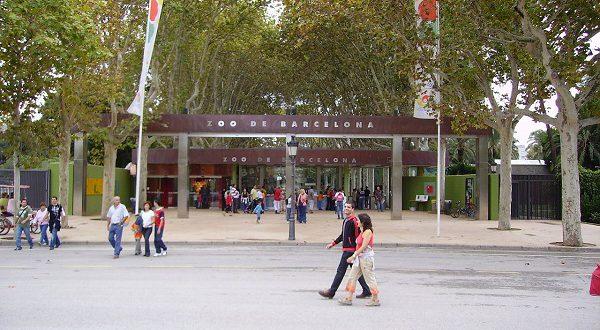 Зоопарк Барселоны берет курс на новую стратегию развития