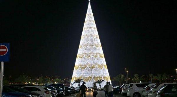 Испанская елка – самая высокая в Европе!