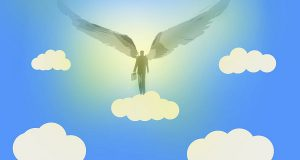Компания Seedrocket помогает стартапам найти бизнес-ангелов
