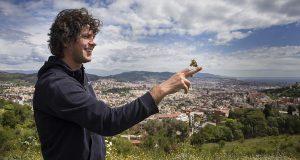 Жители Барселоны и Мадрида встали на защиту бабочек