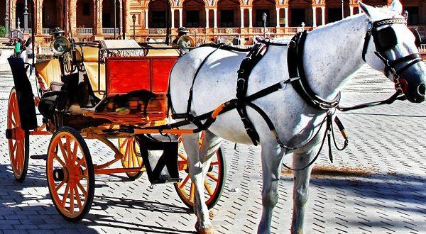Конные повозки попали под запрет в Барселоне