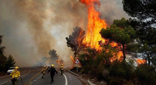 В Испании начались лесные пожары