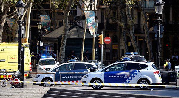 Испанская полиция обезвредиланаркокартель