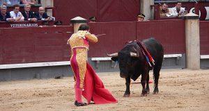 Будет ли жить коррида в Испании?